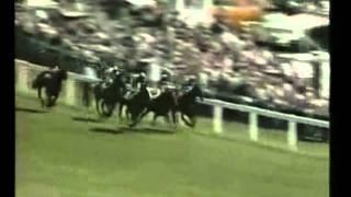 Shergar- The 1981 Epsom Derby (Epsom Downs)