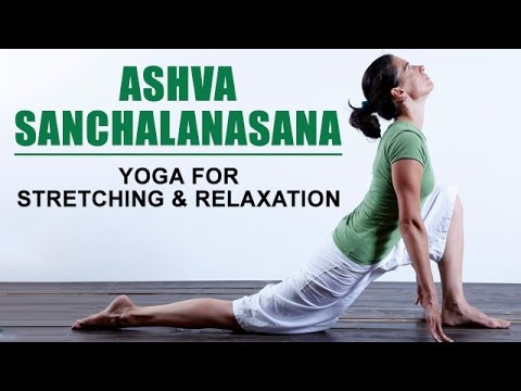 ashva sanchalanasana  yoga for stretching and relaxation