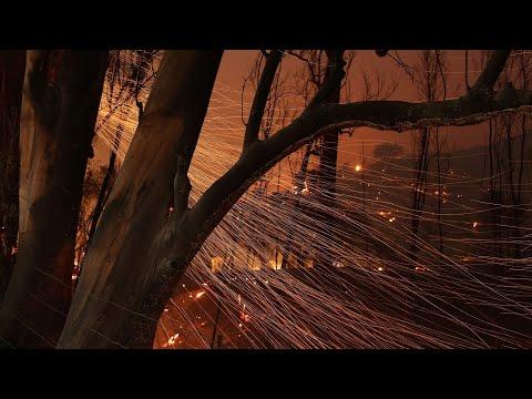 Fire officials update on California's Skirball fire