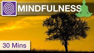 30 Minutes ♪☯♪ Chakra Healing Meditation Music,  Mindfulness Meditation Music, Clear Your Mind