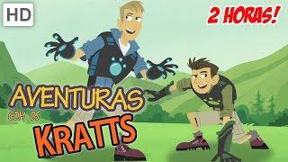 Aventuras com os Kratts (HD Português) - Compilation 2 - Episódios Completos - 2 Horas!