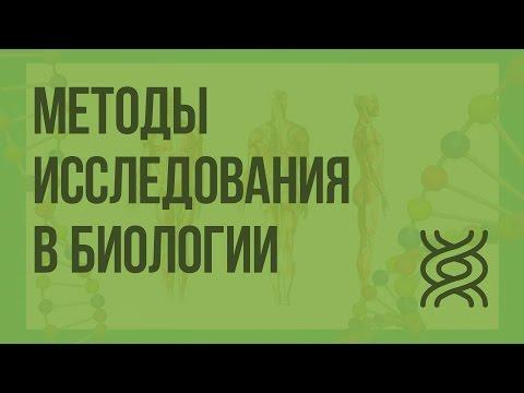 Видеоурок по биологии 10 класс методы исследования в биологии