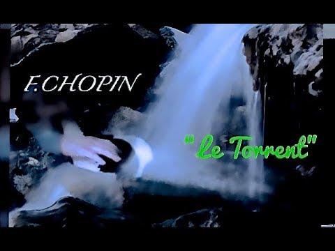 chopin etude op 10 no 4 pdf