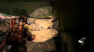 The Last of Us Walkthrough - Part 24