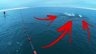 Fishing on a FEEDING FRENZY Monster Fish and Sharks! - Dangerous???