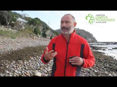 Proyecto para el empleo del alga invasora en cosmética