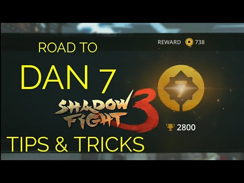 Shadow Fight 3 road to Dan 7 tips and tricks