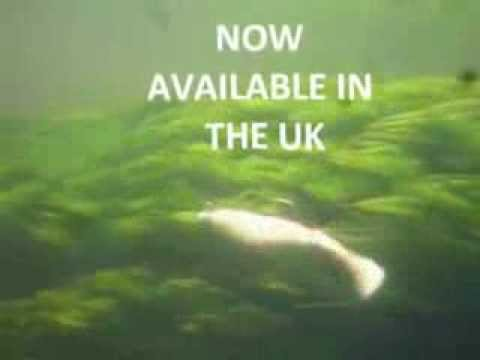 Relax KOPYTO BLS 4 L, extreme UK pike fishing, pike, perch, zander