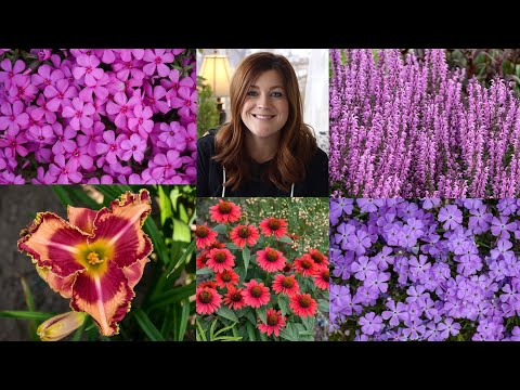 2021 Perennials on Laura's Must-Have List!