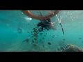 20160830 龍洞灣海洋公園浮潛-360 VR 全景-Kodak Pixpro SP360 4K 拍攝