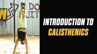 Learn Calisthenics  BEST CALISTHENICS TUTORIAL SERIES  Hindi  Rajan Sharma  MuscleBlaze