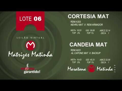LOTE 06 Matrizes Matinha 2019
