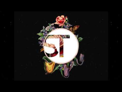 Past Life (Sean Thomas Remix) - Ekali ft. Opia