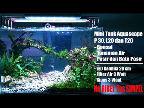 simpel-nano-tank-aquascape