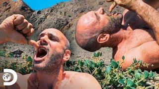 Bebida verde en medio del desierto | Ed Stafford al extremo | Discovery Latinoamérica
