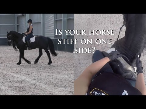 Is Your Horse Stiff On One Side? - Dressage Mastery TV Ep55