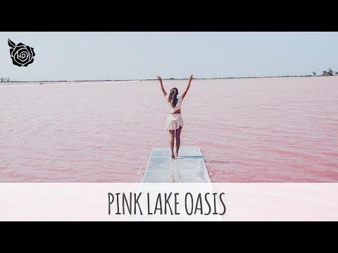 PINK LAKE OASIS | ALEXANDRA PEREIRA