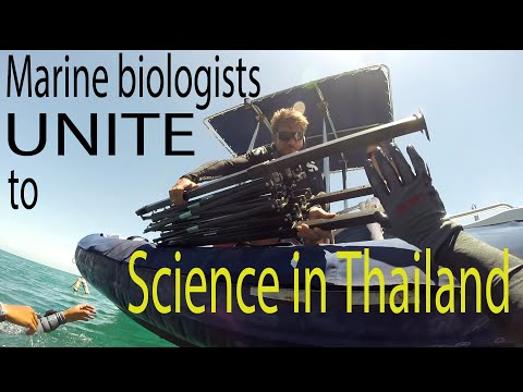 Marine biologists UNITE to science in Thailand