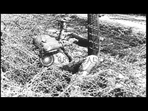 Dead prisoners at Leipzig concentration camp in Germany HD Stock Footage