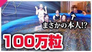 【神回】100万粒のぷよぷよボールでプール作ったら奇跡起きた!!!!
