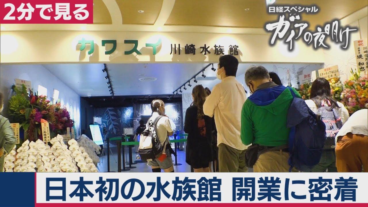 2020/8/11OA 「カワスイ 川崎水族館」開業に密着!【2分で見るガイアの夜明け】