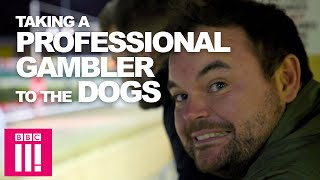 What happens when you take a professional gambler to the dog track | Can You Beat The Bookies?