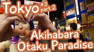 Akihabara Otaku Paradise - Tokyo vlog 3 part 2