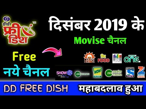 Solid 6363 Set Top Box Unboxing or Full Settings | सभी चैनल Lifetime फ्री देखो इसमे from YouTube · Duration:  8 minutes 22 seconds
