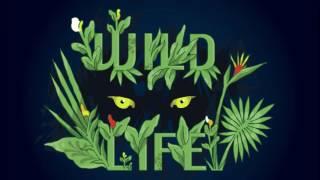 Client Liaison - Wild Life