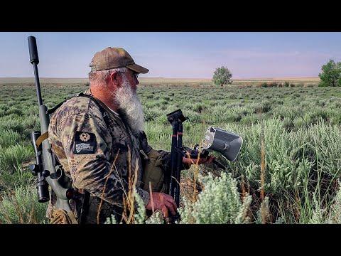 Shotgunned a Bobtail Coyote