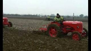 David Brown 30D's ploughing