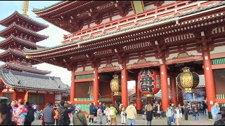 Travelling through Tokyo | Highlights of Japan