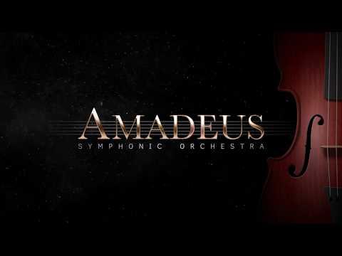 Amadeus Overview