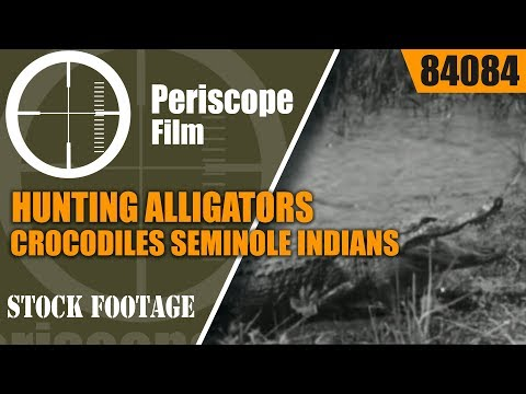 HUNTING ALLIGATORS & CROCODILES SEMINOLE INDIANS    SILENT FILM  84084