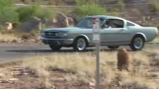 1965 Ford Mustang Fastback GT K-Code by VivaLasVegasAutos