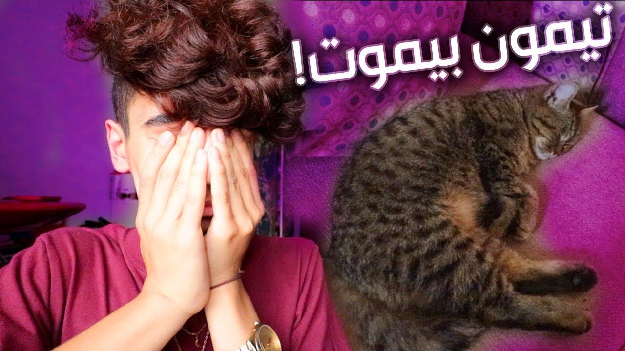 قطوتي فيها سرطان ..