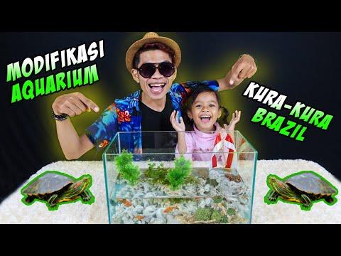 wow!!-kita-modifikasi-aquarium-kura-kura-brazil-di-rumah!!!