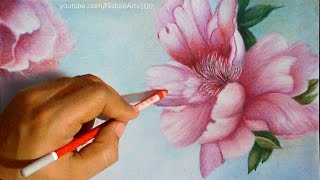 Drawing Roses, Polychromos Colored pencils, Time Lapse