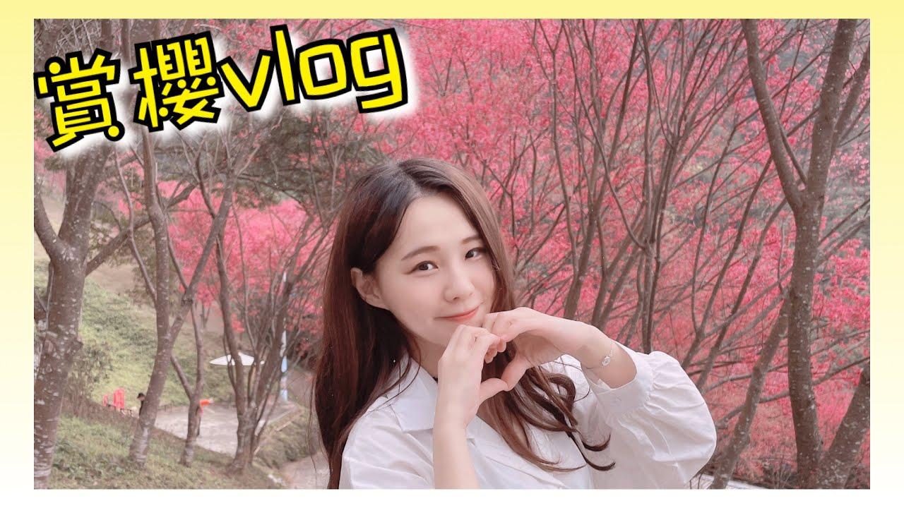 【VLOG】翠墨莊園賞櫻花,郊遊踏青的好去處