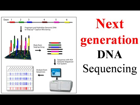 Next generation sequencing - YouTube