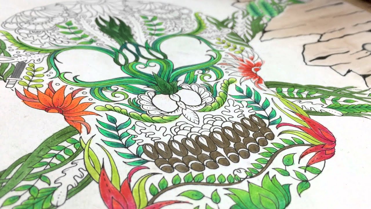 Watch Me Color Johanna Basfords Skull 2 From Lost Ocean With Prisma Premier Faber Castell
