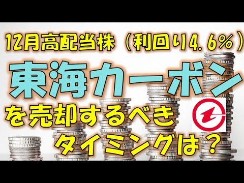 東海 カーボン 株価 予想