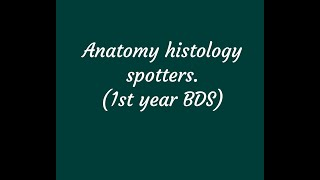 1st year B.D.S HISTO SPOTTERS
