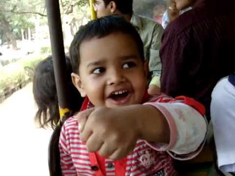 Train Hyderabad Zoo cute child
