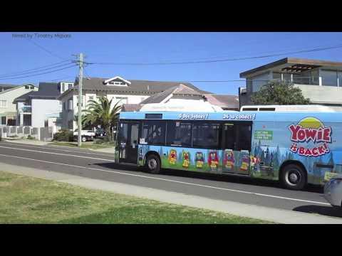 Buses In Sydney, Australia 2017