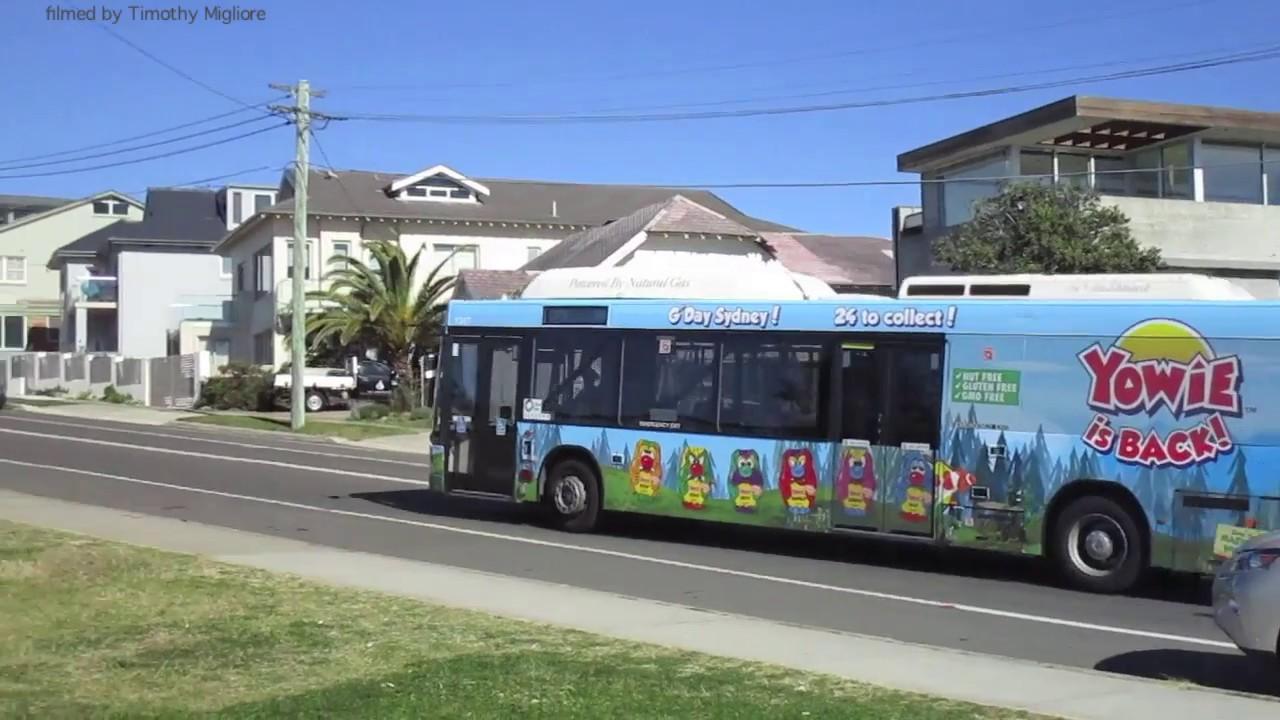 6dd8b24331 Buses in Sydney