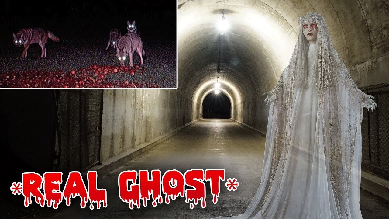 The ghost at the tunnel is real confirmed youtube for Peg entwistle ghost caught on tape