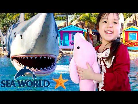 ゴールドコースト シーワールドへ行ってきたよ♪ Sea World Gold Coast Family Fun! MayuChannel
