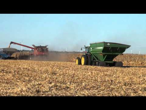 Case IH Corn harvest in Illinois 2015
