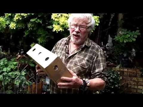 Bill Oddies mealworm dery #AskBillOddie
